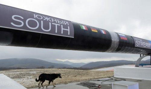 Без «южного потока» турция столкнется ссерьезными проблемами вгазоснабжении— али шен - «энергетика»