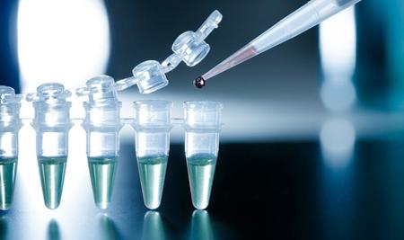 Чешская компания планирует открыть в челябинске банк стволовых клеток