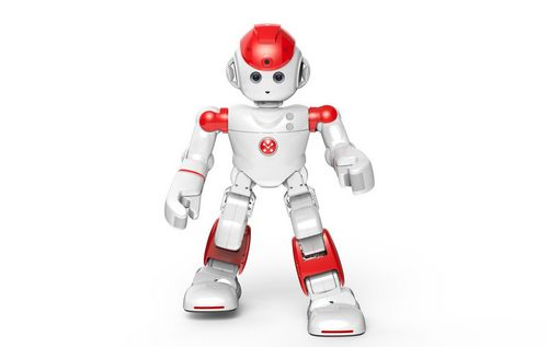 Домашний робот для общения и развлечений (10 фото + видео)