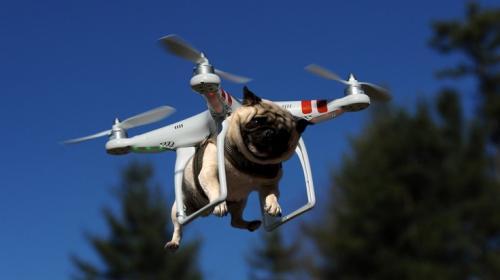 Faa создаёт консультативный комитет во главе с директором intel для разработки норм коммерческого использования дронов