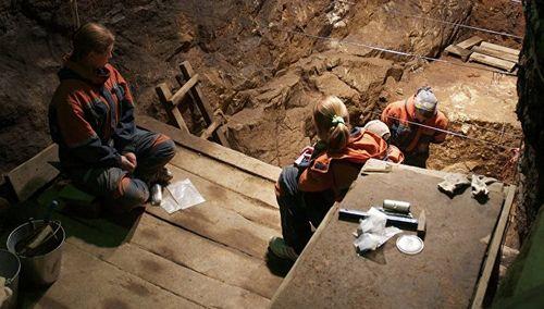 Геном неандертальцев указал на наличие четырех видов древних людей