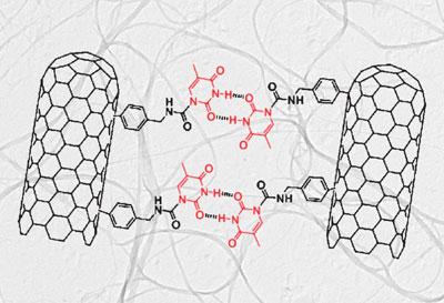 Химическая модификация углеродных нанотрубок