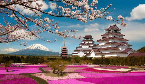 Япония активно оптимизирует потребление электроэнергии