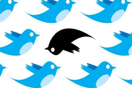 Эксперты обнаружили, что в больших городах люди меньше используют twitter