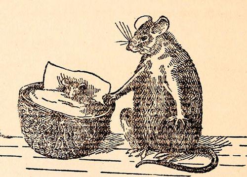 Напечатанные яичники вернули мышам способность к размножению