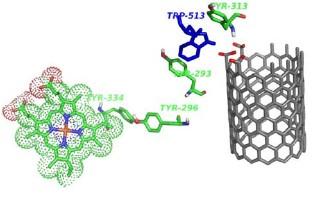 Открыта методика разрушения углеродных нанотрубок в организме
