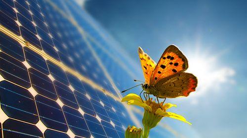 Перезаряжаемые «солнечные батарейки» из углеродных нанотрубок