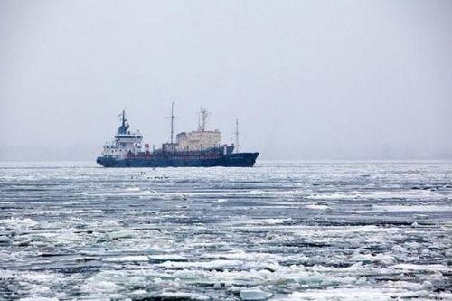 Платформа «северный полюс» заложена в планы петербурга на 2019 год