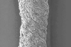 Получены первые в мире искусственные сухожилия