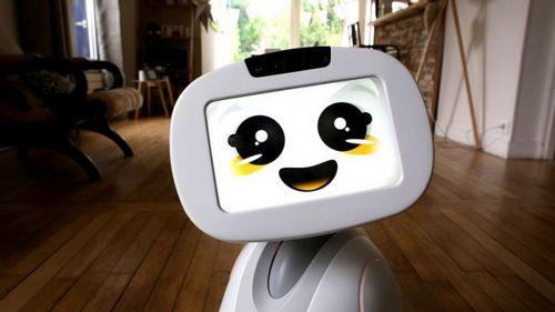 Робот для всей семьи (6 фото + видео)