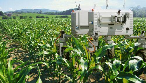 Робот-фермер (6 фото)