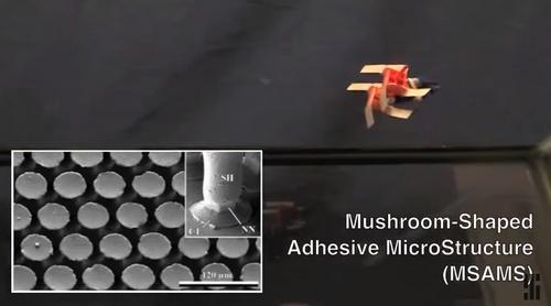 Робот с квадратными колёсами ходит по потолку