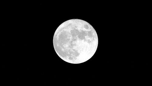 Роскосмос будет осваивать луну за свой счет