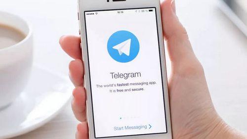 Telegram-каналы стали источником информации о политике