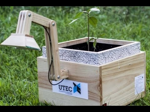 В перу получают электричество от растений (2 фото + видео)