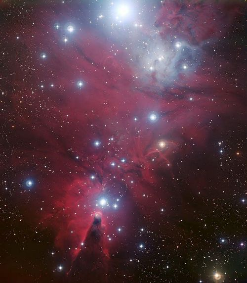 Звездный кластер «рождественская елка» астрономы назвали самым праздничным местом во вселенной